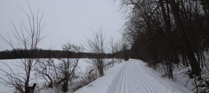 Le Bois de Belle-Rivière à Mirabel