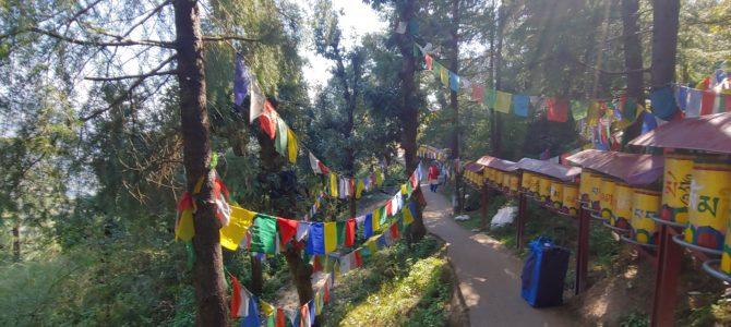 Inde – Himalaya – Rishikesh et Dharamsala