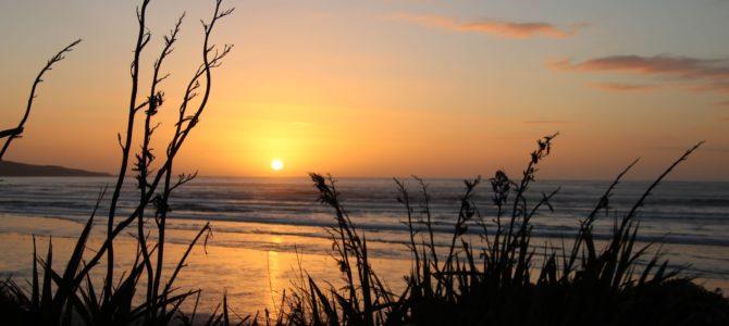 Nouvelle Zélande – île du Sud – les Catlins