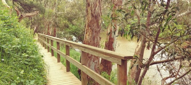 Australie – Victoria – Yarra bend park