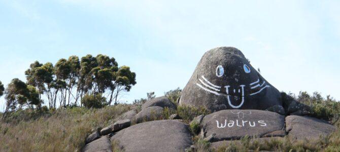 Australie – Tasmanie – Entre mer et montagne