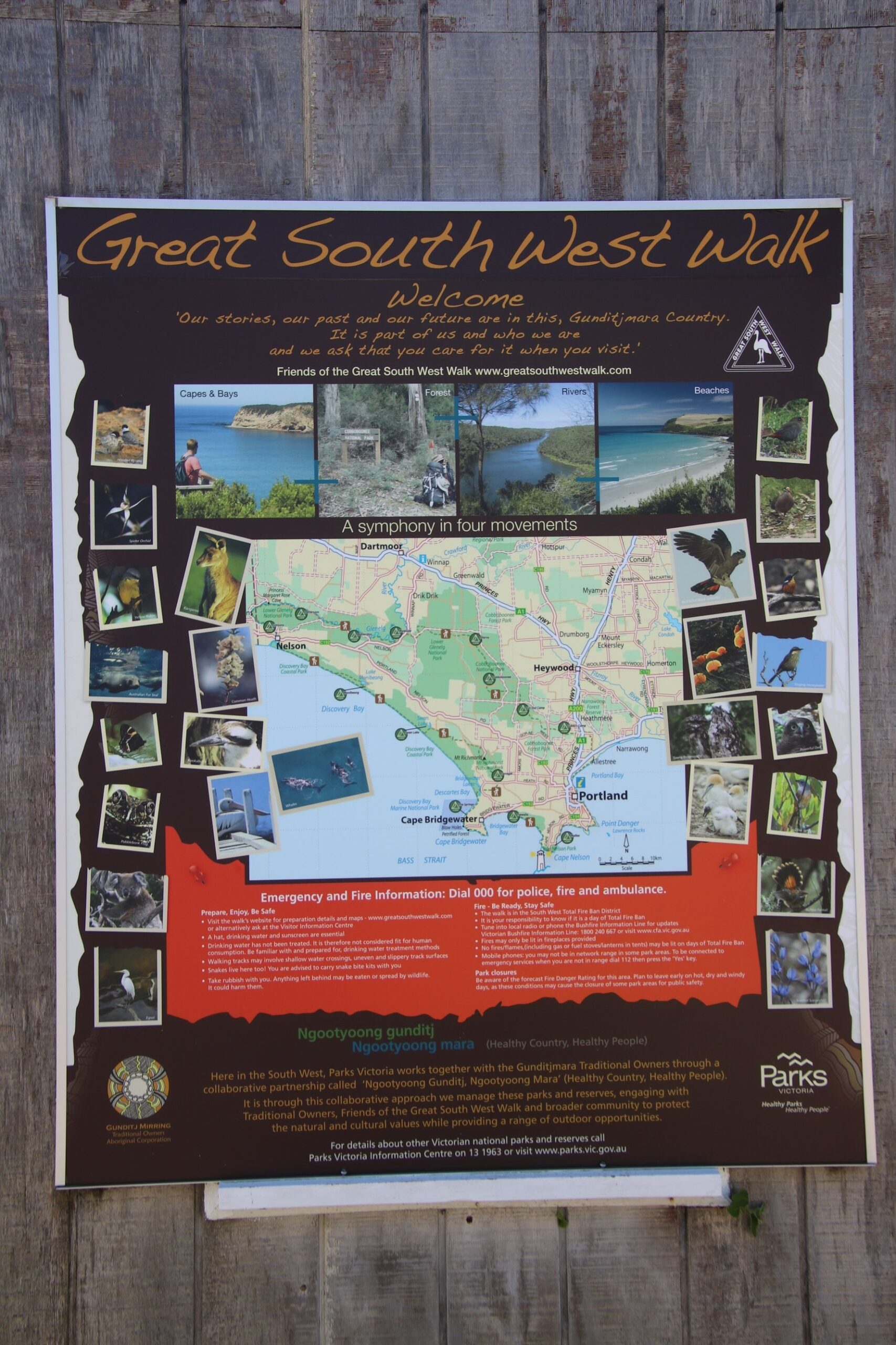 Australie – Victoria – la Great South West Walk